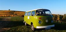 Discover Alsace in Vintage VW Combi