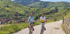 Alsace Wine Road by bike