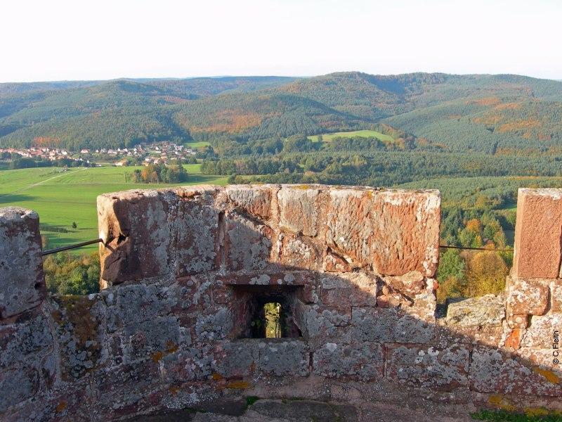 Randos et châteaux dans les Vosges du Nord !