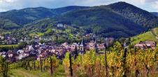 Original Alsace