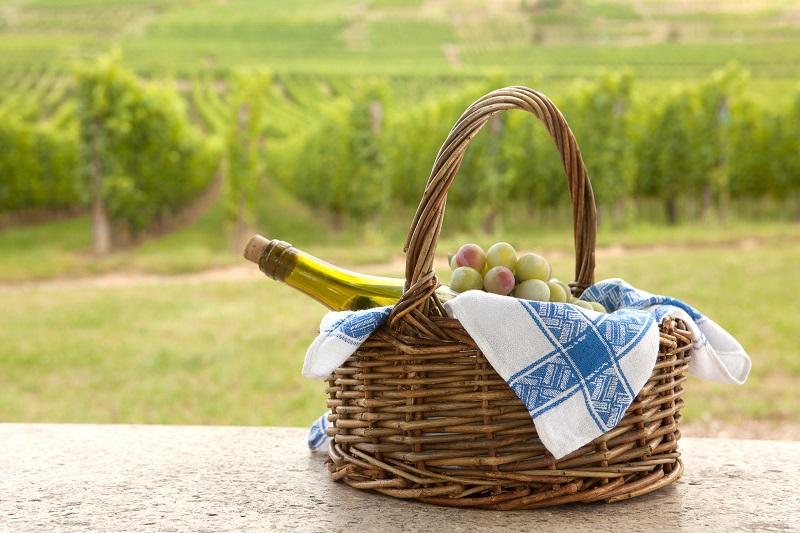 Wines S'Cape