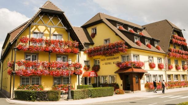 L'Alsace vue du ciel