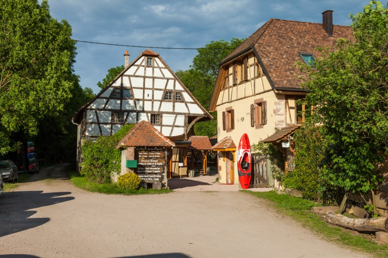 Alsace with excursion in canoe