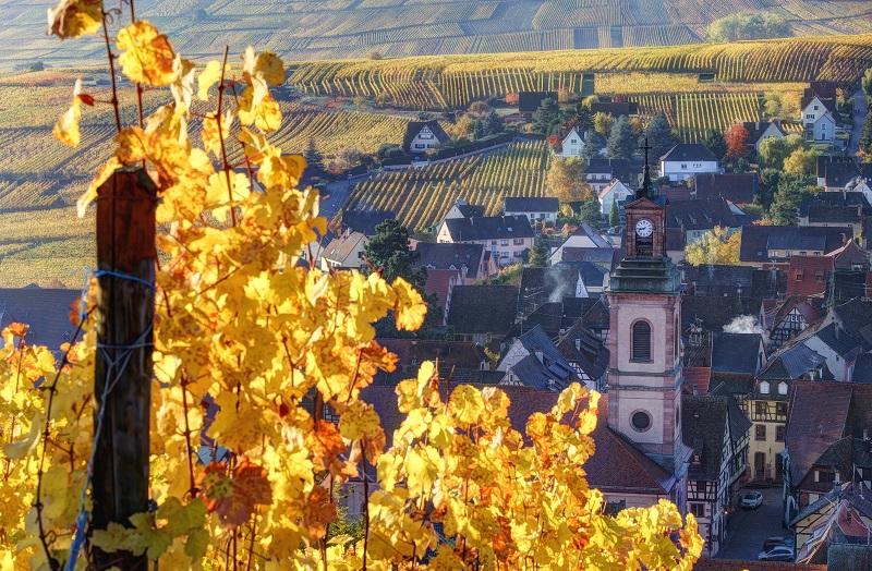 Tour des vins d'Alsace - journée - tour privé