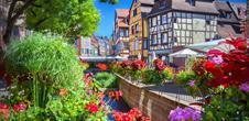 Les perles d'Alsace - tour privé