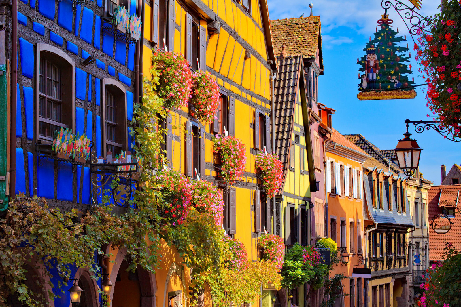 Pearls of Alsace - Private tour