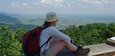 Le tour du Mont Ste Odile en randonnée à pied