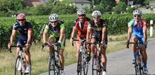 Tour d'Alsace et du Vignoble par Colmar & Strasbourg