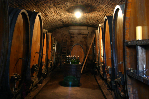 Alsace Wines Discovery Tour