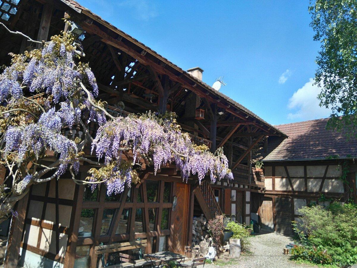 Meubl De Tourisme L 39 Arbogaste La Grange Schaeffersheim