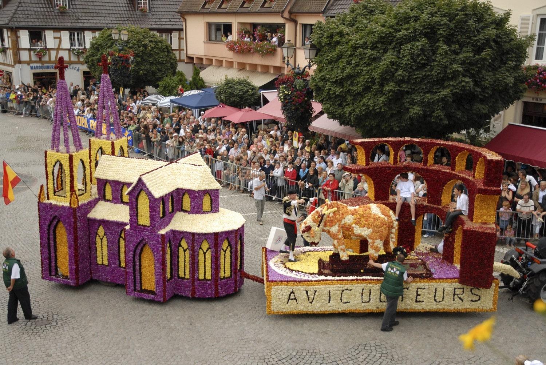 Zucker Festival