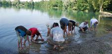 Atelier d'orpaillage : cherchez des paillettes d'or dans le sable de nos gravières !