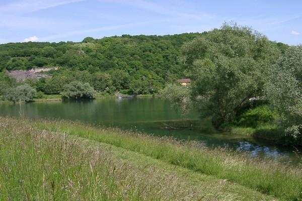 Ausflugspfad am Rhein