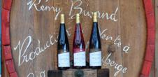 Auberge du Grand Ried (Wine)
