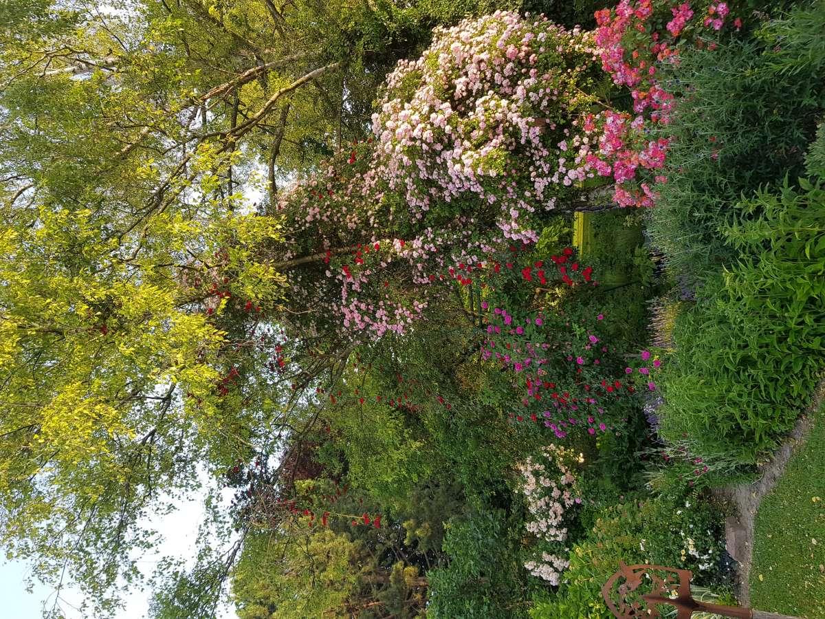Der Garten von Nicole