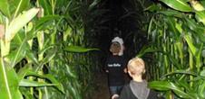 Labyrinthe nocturne à la ferme Kieffer