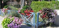 Balade ludique à Marckolsheim (vélo)