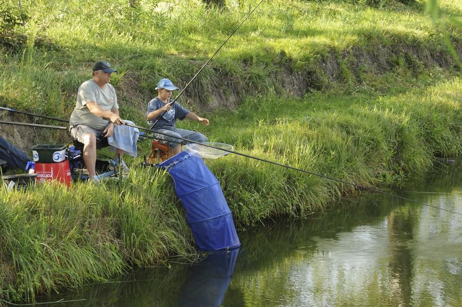 Pêche au coup carpe