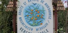 Verger école Nordhouse - Hipsheim