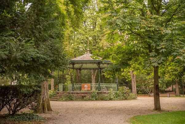 Automne aux parcs - Arbre au palais