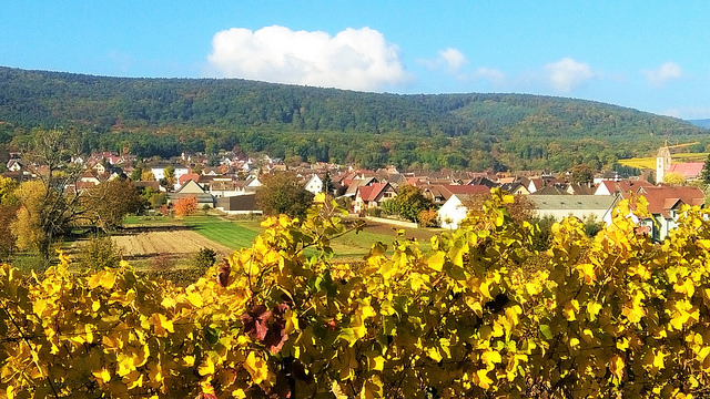 Durch Weinberge und Dörfer