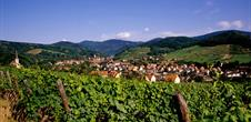 Pearls of the Alsace Wine Route