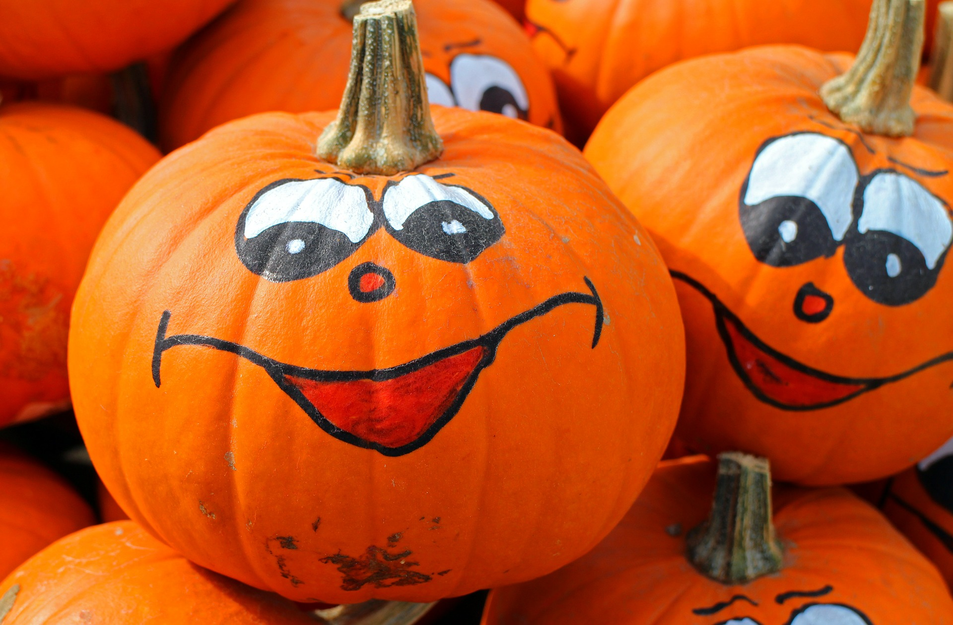 Samedi manuel : Autour d'Halloween