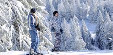 Les Mois du Blanc - formule ski alpin : 3 nuits pour le prix de 2!