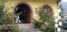 Noël chez le vigneron alsacien