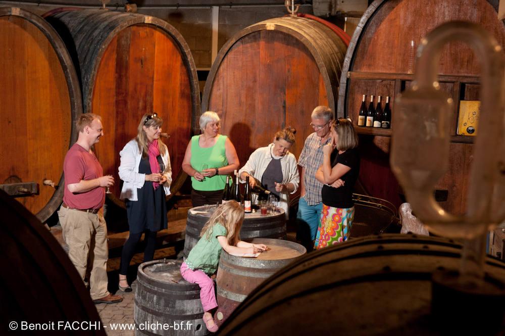 Alsace Écotourisme – Éveil à la permaculture dans les vignes