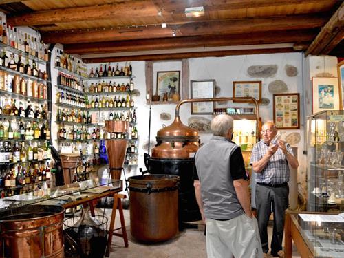 Brandies museum
