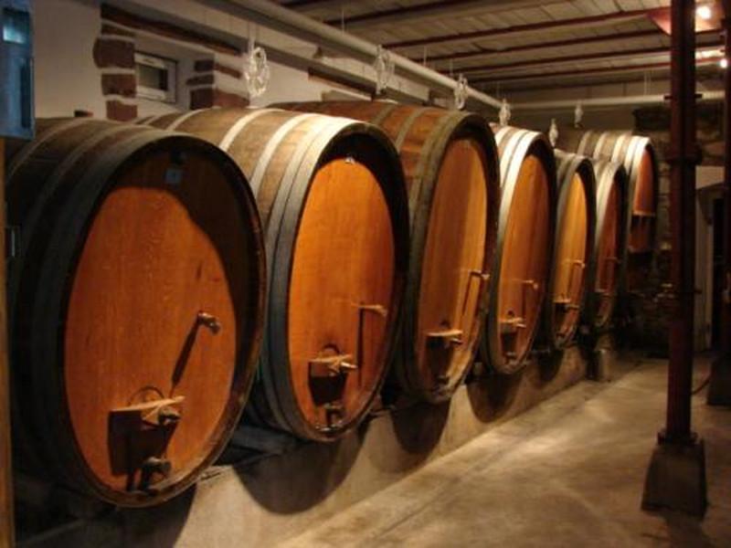 Apéro gourmand chez le vigneron - Spannagel