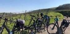 Balade à vélo électrique dans le vignoble