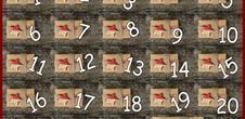 Le calendrier de l'Avent du vigneron