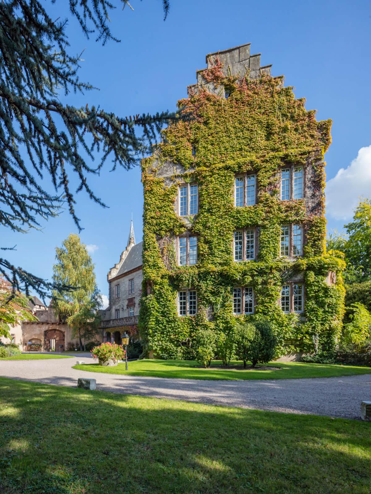 Confrérie Saint-Etienne d'Alsace