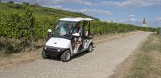 Drive in the vineyards with small electric car