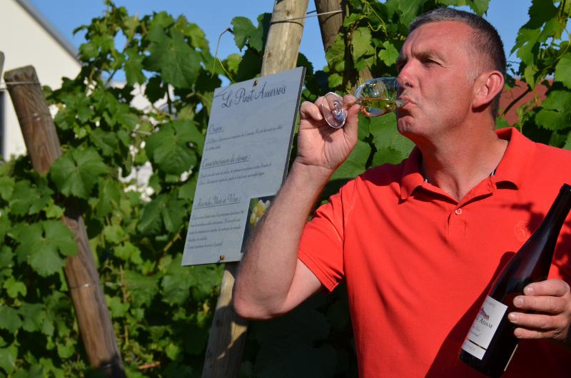 Winery Adam Pierre