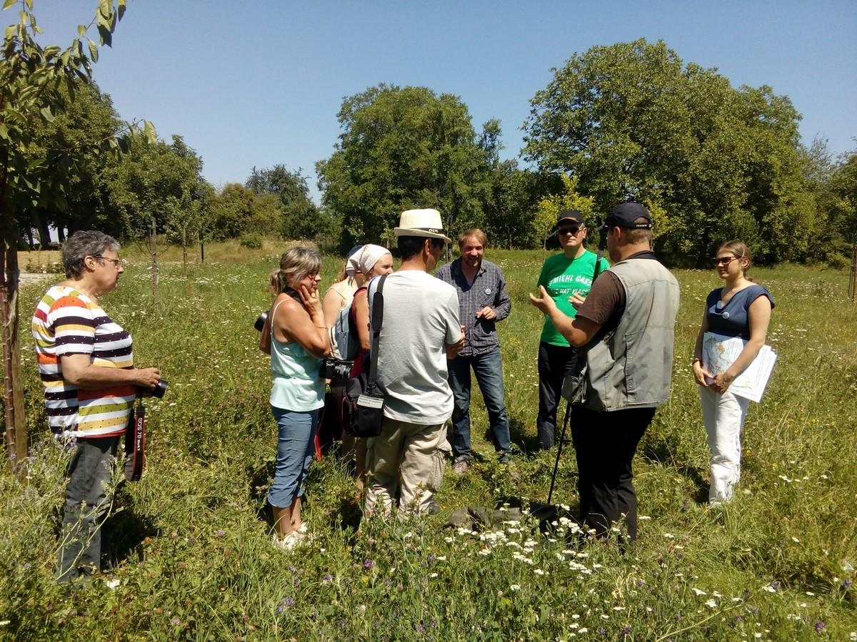Journée de la biodiversité - Soultz sous Forêts
