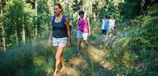 Alsace Écotourisme–Au cœur de la forêt, au cœur des sens