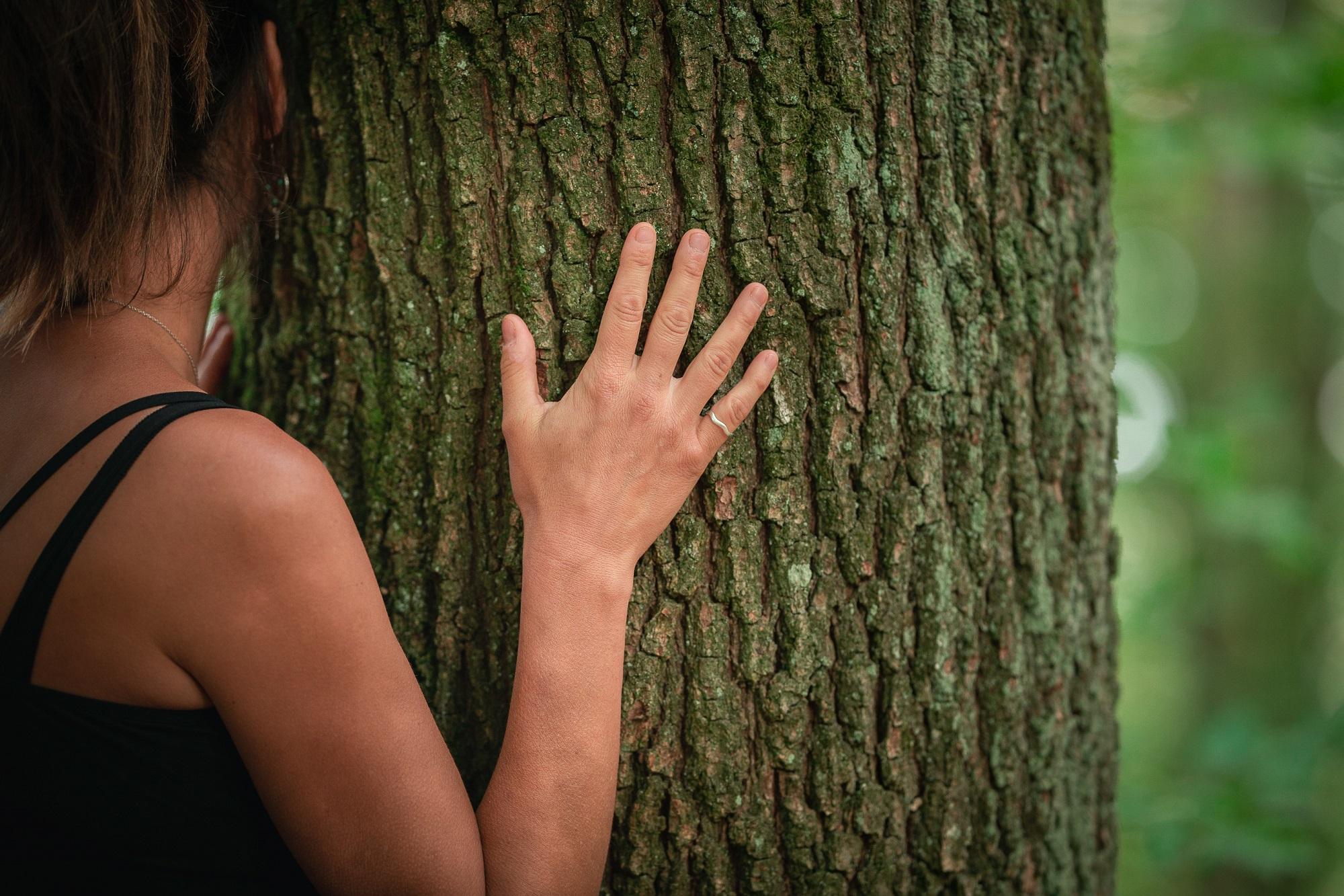 Alsace Écotourisme–Au coeur de la forêt, au cœur des sens