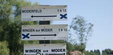 Je randonne dans le Parc Naturel Régional des Vosges du Nord