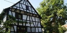 Berceau du judaïsme rural 12 Synagogue de Mulhausen