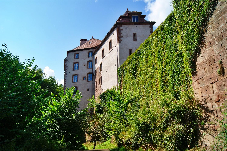 https://apps.tourisme-alsace.info/photos/lpp/photos/217006306_1.JPG