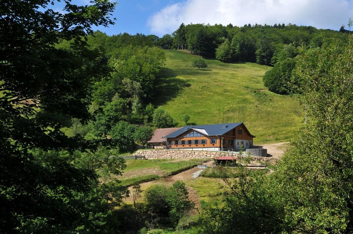 Berggasthof Lochberg