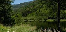 Lac de Sewen