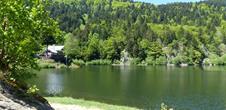 The Neuweiher lakes