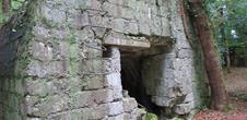 Piste et Trésor : Dans l'ombre des Bunkers à Burnhaupt-le-Bas