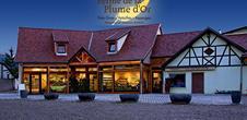Farm la Plume d'Or - Producer of foie gras