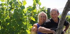Vins Domaine Philippe Heitz