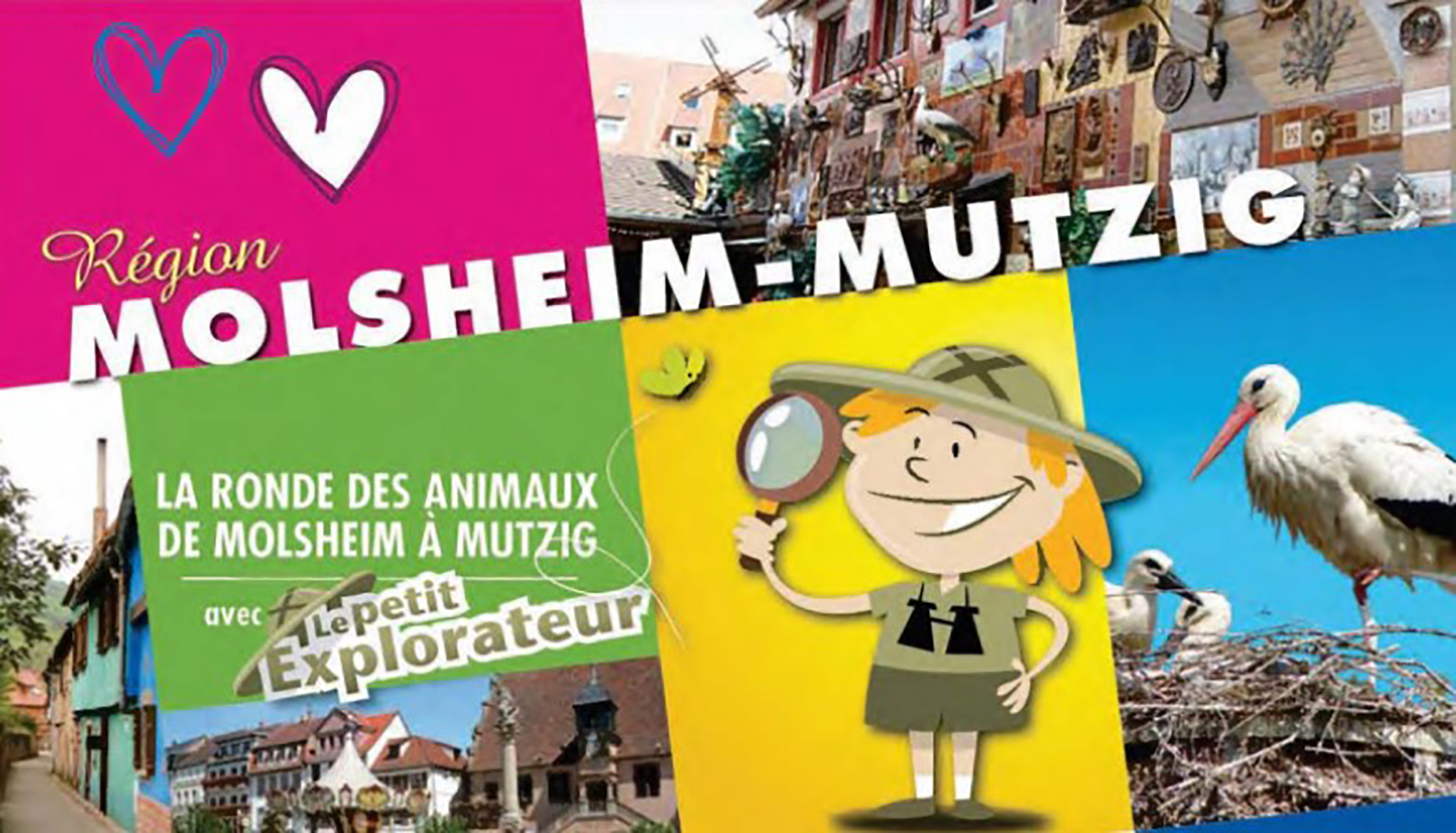 https://apps.tourisme-alsace.info/photos/molsheim/photos/218006553_1.jpg